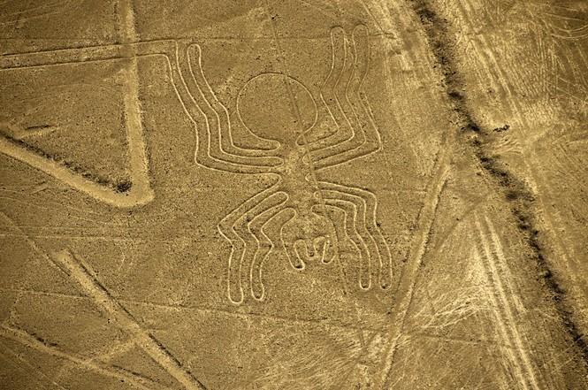 Bí ẩn 'Những đường vẽ Nazca' giữa sa mạc Peru - ảnh 5