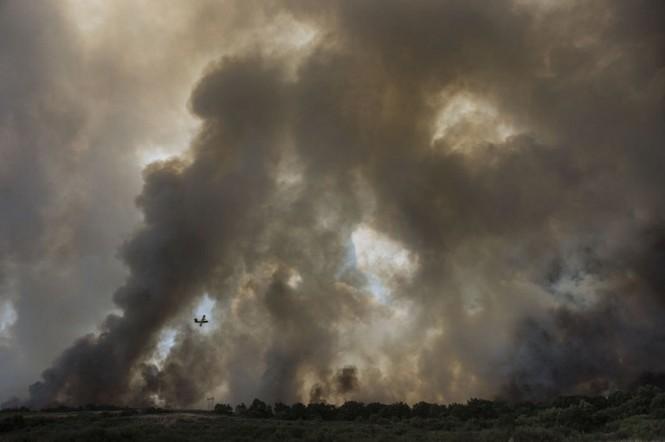 Hình ảnh cháy rừng khủng khiếp ở Tây Ban Nha - ảnh 6