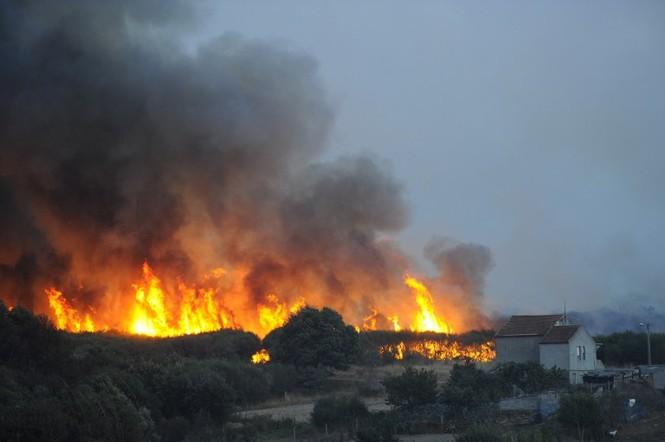Hình ảnh cháy rừng khủng khiếp ở Tây Ban Nha - ảnh 7
