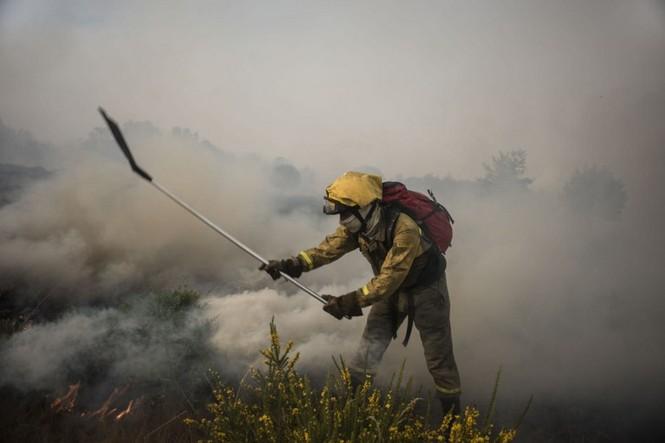 Hình ảnh cháy rừng khủng khiếp ở Tây Ban Nha - ảnh 1