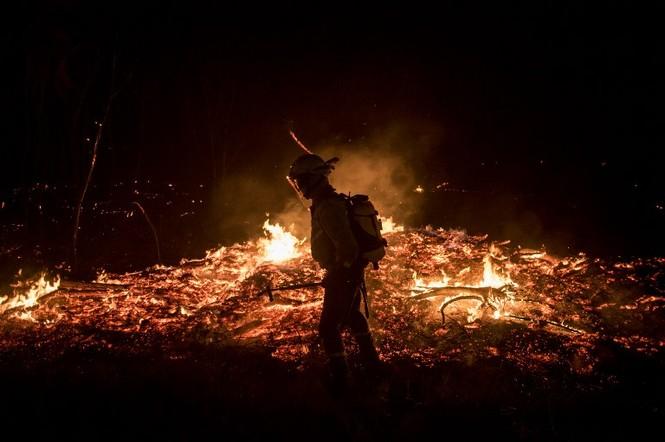 Hình ảnh cháy rừng khủng khiếp ở Tây Ban Nha - ảnh 2