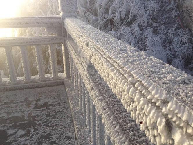 Băng tuyết bao phủ trên đỉnh Fansipan - ảnh 1