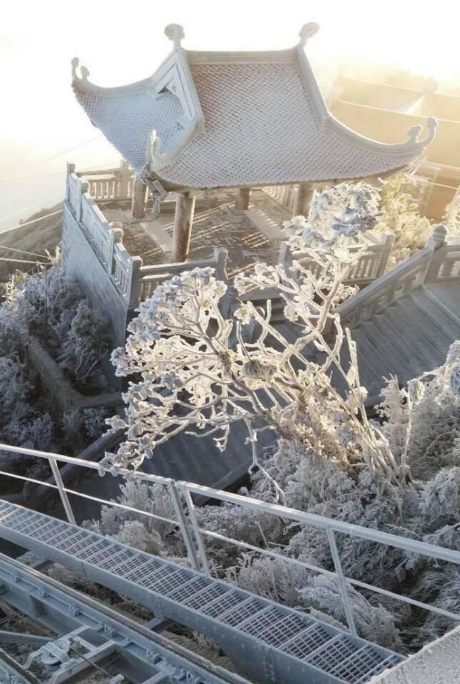 Băng tuyết bao phủ trên đỉnh Fansipan - ảnh 6