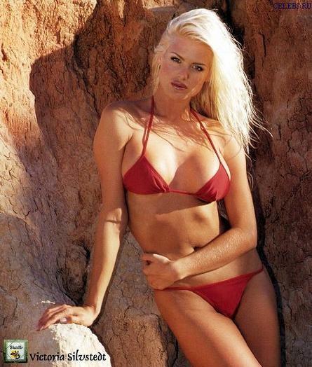 Hoa hậu Thuỵ Điển 'bốc lửa' với áo tắm ở tuổi 46 - ảnh 12