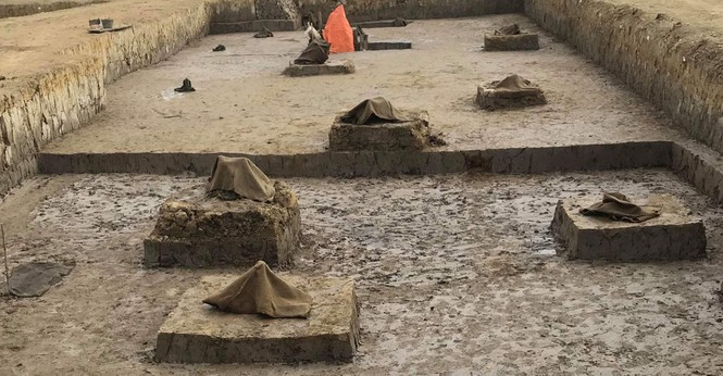 Phát hiện bãi cọc gần nghìn năm tuổi ở Hải Phòng - ảnh 2