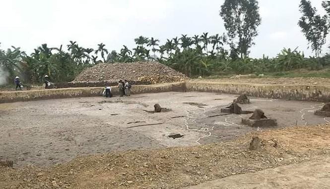 Phát hiện bãi cọc gần nghìn năm tuổi ở Hải Phòng - ảnh 1