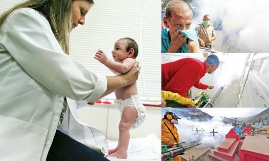 Lo ngại virus Zika vào Việt Nam dịp Tết - ảnh 1