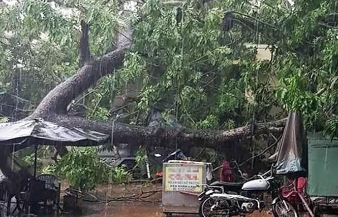Hơn 600 căn nhà ở miền Tây bị sập, tốc mái trong mưa giông - ảnh 2