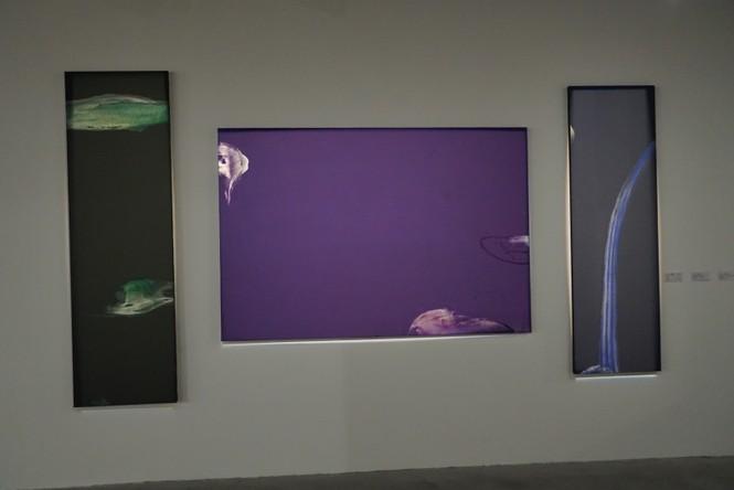Chiêm ngưỡng tranh của các nghệ sĩ tiêu biểu Châu Á quy tụ tại Hà Nội - ảnh 6