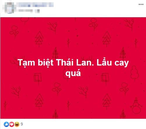 Dân mạng 'bùng nổ' khi U22 Việt Nam loại U22 Thái, vào bán kết SEA Games 30 - ảnh 9