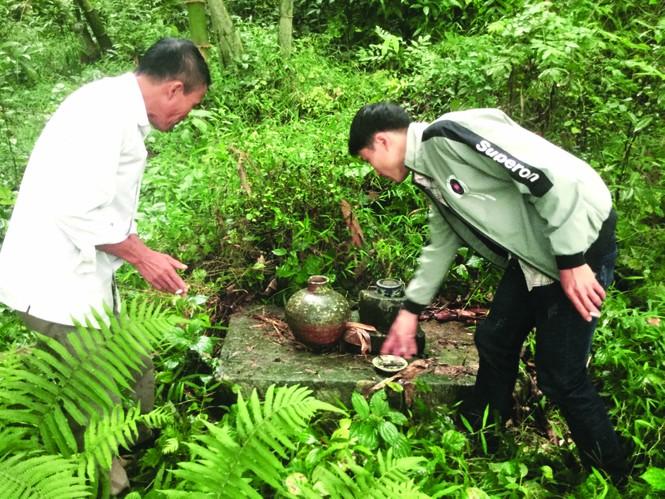 Kỳ lạ rừng nghiến Đông Đằng - ảnh 3
