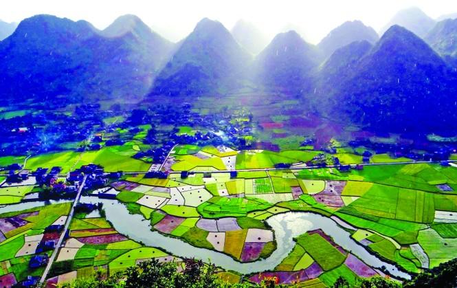 Kỳ lạ rừng nghiến Đông Đằng - ảnh 2