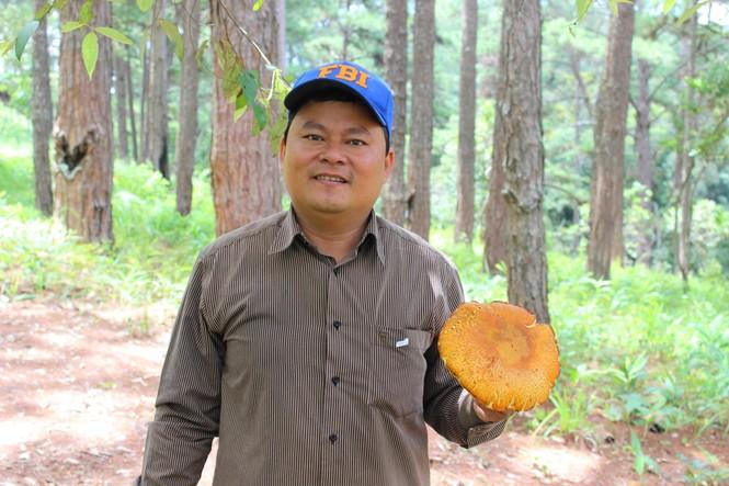 Lội rừng cùng chuyên gia nấm - ảnh 2