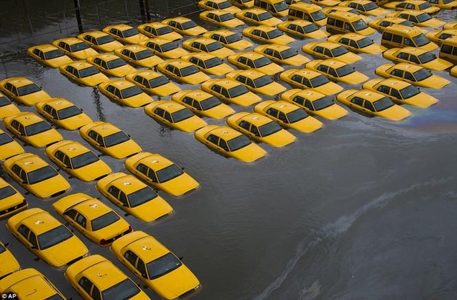 Một cơ sở sản xuất ô tô chìm trong nước