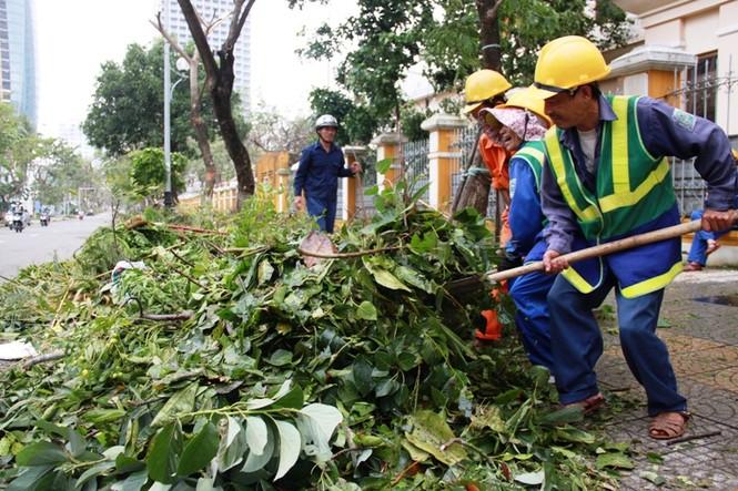 Miền Trung thiệt hại trên 1.500 tỷ đồng vì bão số 11 - ảnh 4