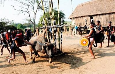 Những lễ hội... rùng mình tại Việt Nam - ảnh 2