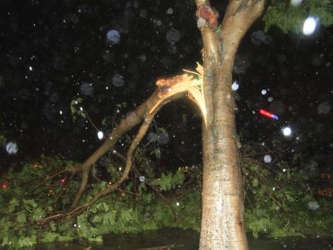Siêu bão Nari áp sát đất liền, gió giật kinh hoàng - ảnh 10