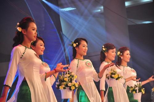 Hình ảnh đêm chung kết 'Người đẹp xứ Trà' 2013 - ảnh 3