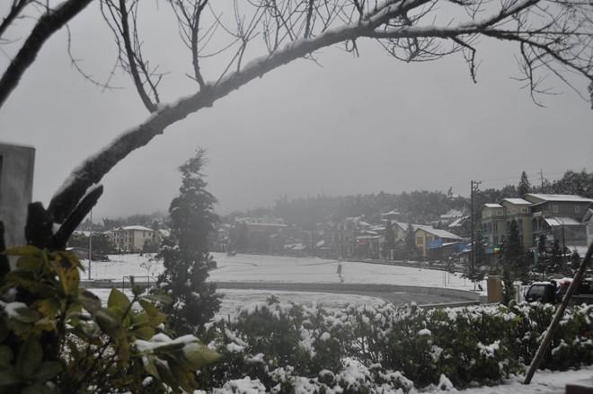 Khách du lịch đổ xô lên Sa Pa đón tuyết trắng - ảnh 19