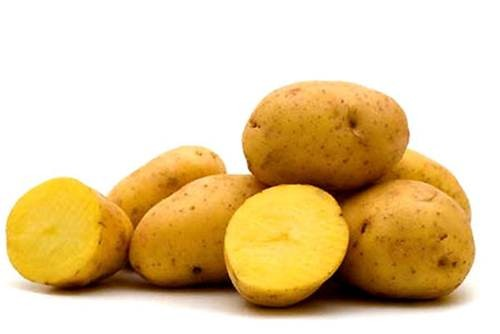 Tác dụng chữa bệnh của khoai tây - ảnh 1