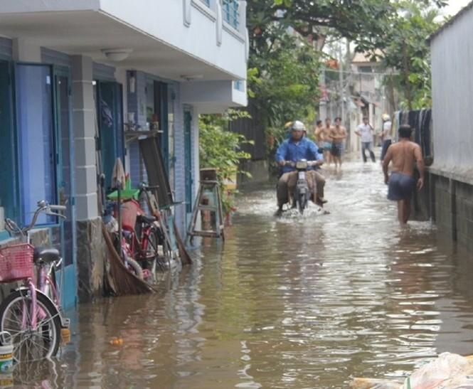 Hơn 20 hộ dân bị ngập nặng