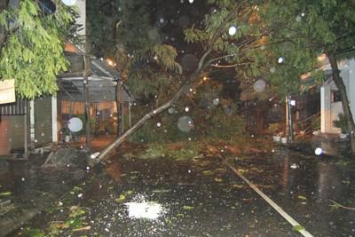 Siêu bão Nari áp sát đất liền, gió giật kinh hoàng - ảnh 6