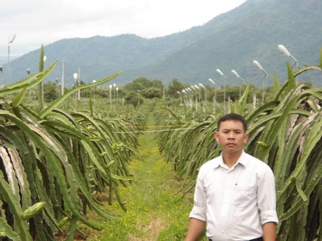 Anh Nguyễn Quý Thông tại ruộng thanh long của gia đình
