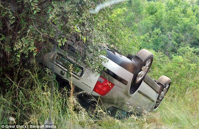 Đi du lịch, bị voi năm tấn húc đổ ôtô - ảnh 4