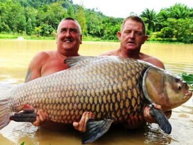 Con cá chép nặng 60kg do ông Keith Williams (trái) bắt được