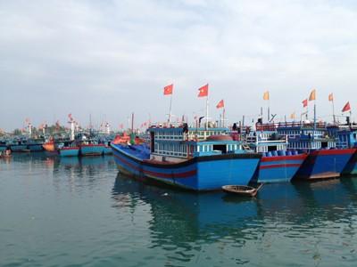 Đội tàu Lý Sơn