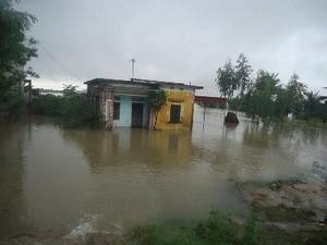 Nhiều nhà dân bị ngập trong nước sau bão. (Ảnh: Đức Phương/TTXVN)