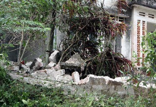 Đã có 24 người chết trong vụ nổ xưởng pháo hoa - ảnh 3