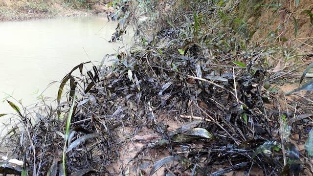 Phát hiện 200 lít dầu thải đổ ở đầu nguồn sông Hiếu - ảnh 1