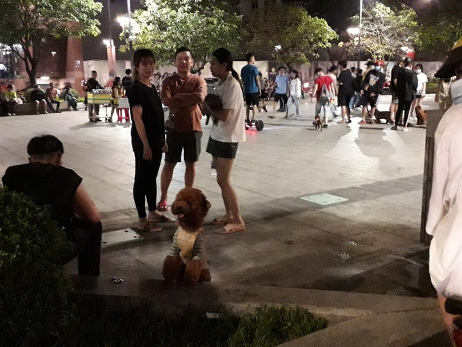 Phố đi bộ Nguyễn Huệ thành… phố hàng rong, nơi dắt cún cưng đi dạo  - ảnh 6