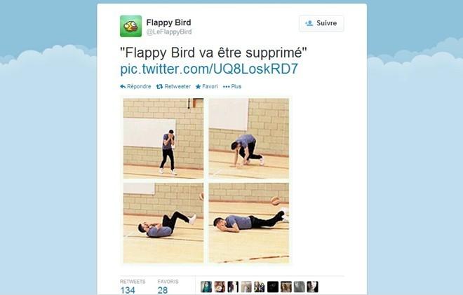 Cộng đồng mạng 'tưởng nhớ' Flappy Bird như thế nào? - ảnh 6