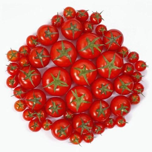 Mẹo bảo quản hoa quả tươi lâu trong tủ lạnh - ảnh 7