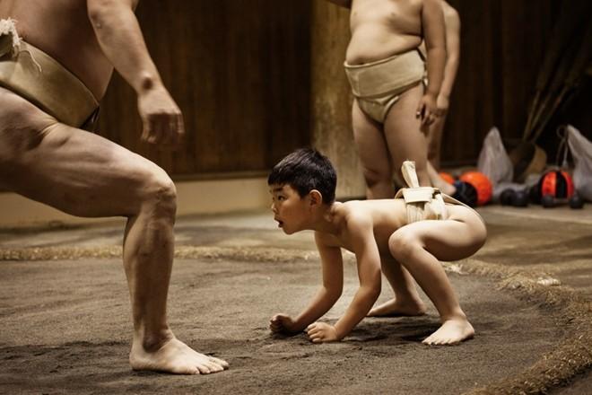 Một ngày khổ luyện của các võ sĩ sumo nhí Nhật Bản - ảnh 1