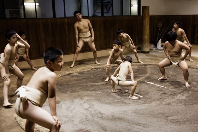 Một ngày khổ luyện của các võ sĩ sumo nhí Nhật Bản - ảnh 3
