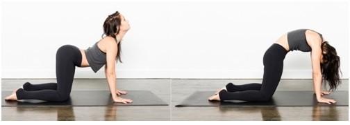 5 bài tập hiệu quả cho thoát vị đĩa đệm thắt lưng - ảnh 3