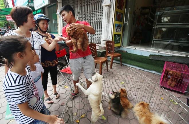 Trào lưu nuôi thú 'lạ' của người Hà Nội - ảnh 7