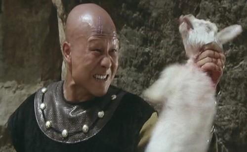 Đẳng cấp 'ngũ đại cao thủ' phản diện trên màn ảnh Trung Quốc - ảnh 11