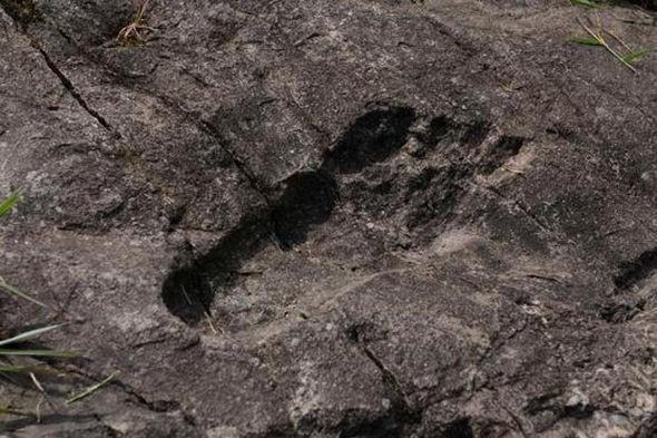 Có hay không chuyện người khổng lồ từng dạo bước khắp Trái Đất? - ảnh 1