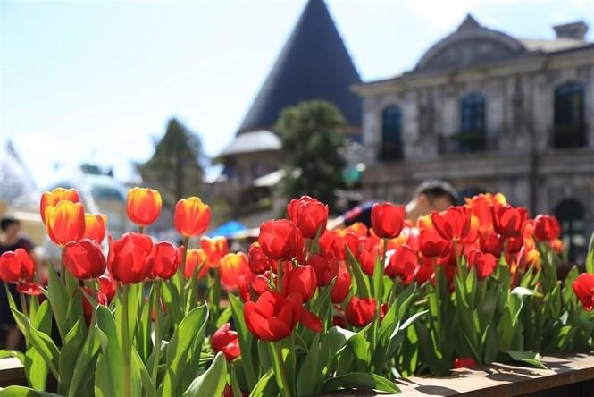 Đến Bà Nà Hills xem nghệ sỹ châu Âu kể chuyện cổ tích về các loài hoa - ảnh 1