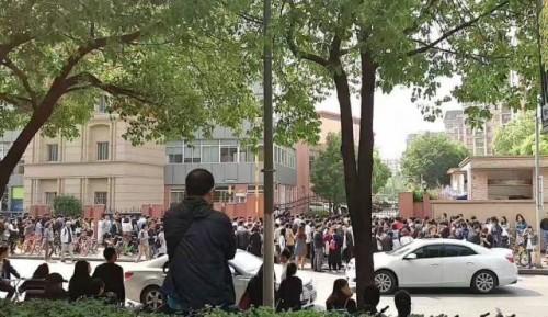 Hồ sơ chạy đua nhập học: Dân mạng chỉ trích tố áp lực - ảnh 1