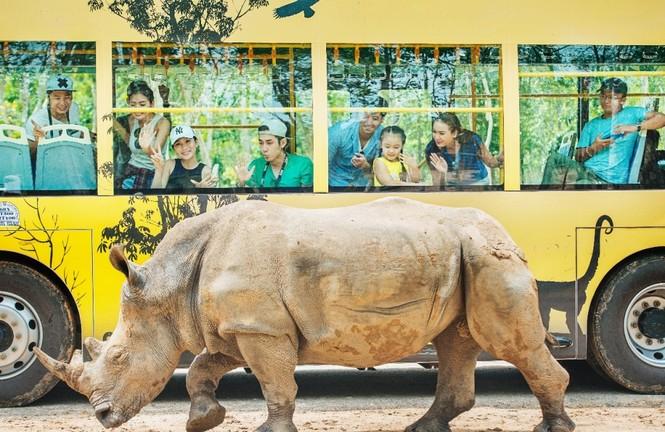 Vinpearl Safari đăng cai tổ chức hội nghị bảo tồn và phúc trạng động vật lớn nhất Đông Nam Á - ảnh 2