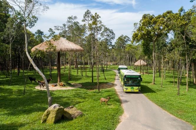 Vinpearl Safari đăng cai tổ chức hội nghị bảo tồn và phúc trạng động vật lớn nhất Đông Nam Á - ảnh 5