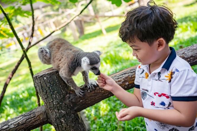 Vinpearl Safari đăng cai tổ chức hội nghị bảo tồn và phúc trạng động vật lớn nhất Đông Nam Á - ảnh 6