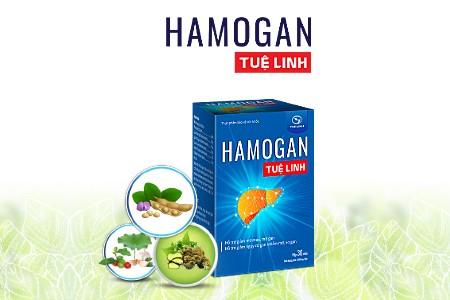 Chuyên gia đánh giá như thế nào về Hamogan Tuệ Linh? - ảnh 1