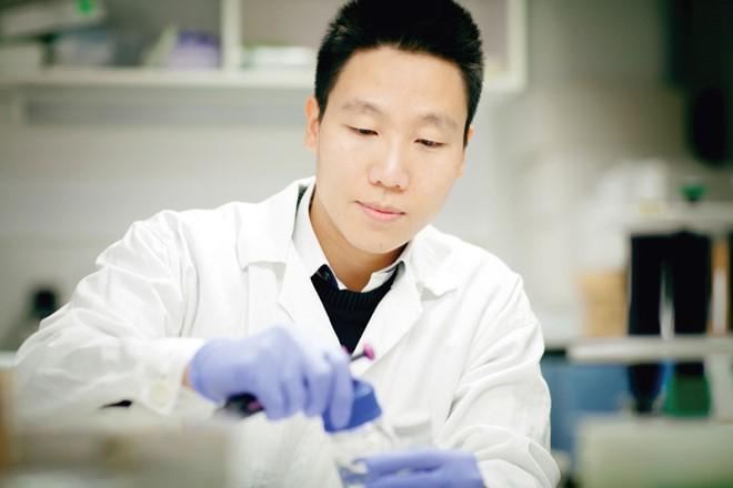 Tin vui cho bệnh nhân ung thư Việt Nam từ tiến sĩ gốc Việt cùng đồng nghiệp - ảnh 1