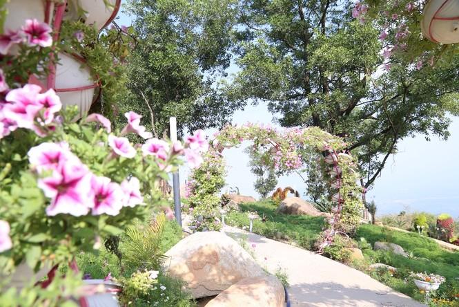 Ngừng đón khách, KDL Núi Bà Đen vẫn đang thay đổi từng ngày, đẹp mê mẩn - ảnh 1